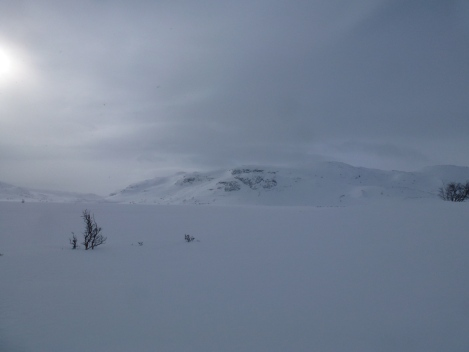 Hardangervidda, cross country skiing, pulk, winter